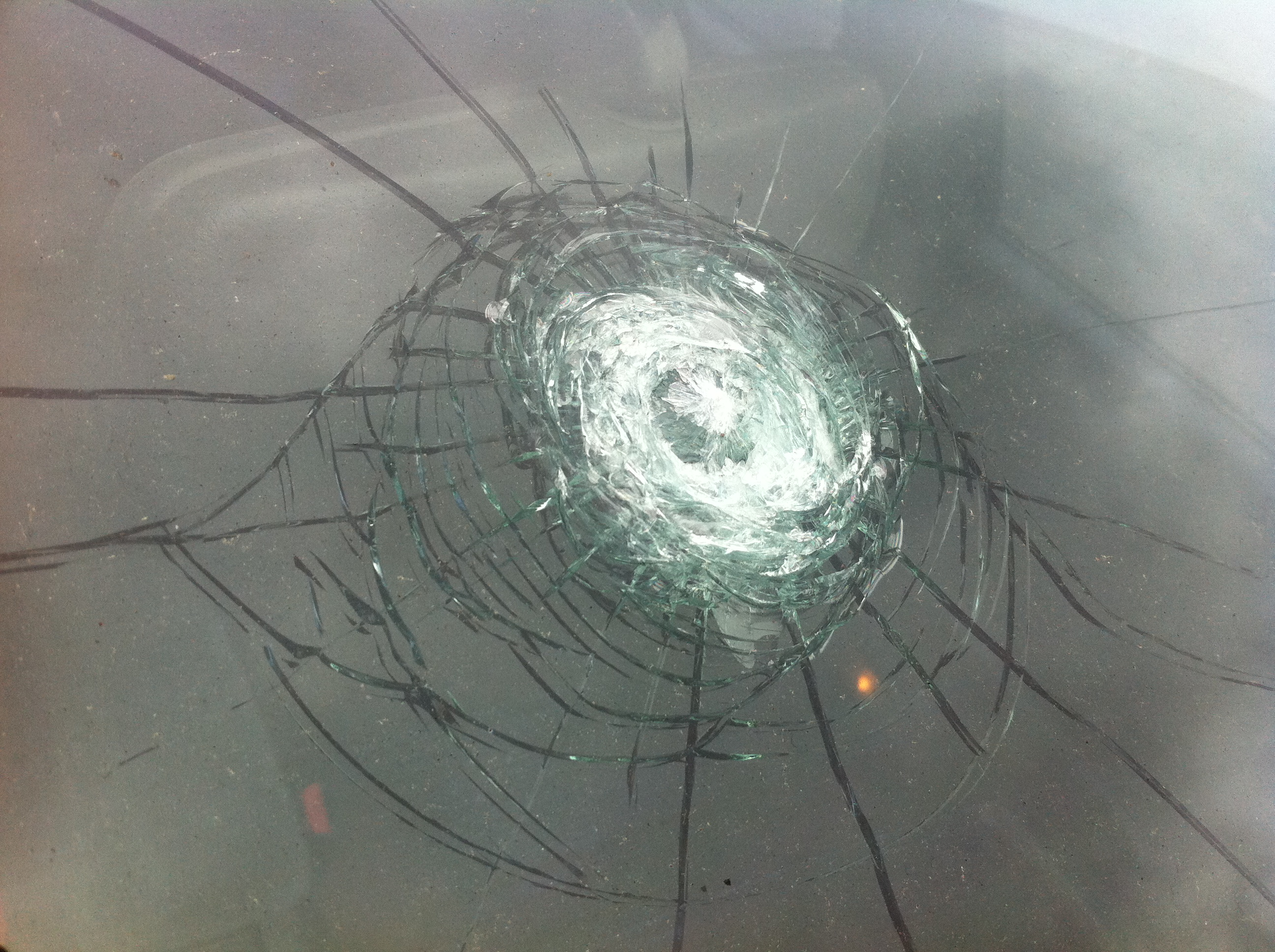 windscreen crack repairs auckland auckland windscreens